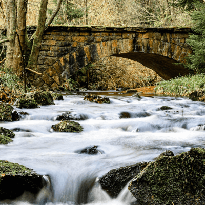 Harz Deutschland Klares Wasser Brücke